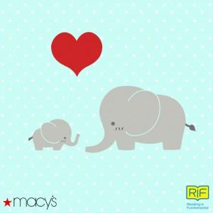 elephant-cute